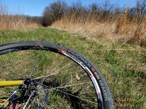 Wheel and grassy trail