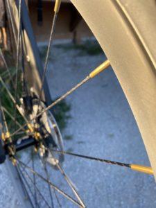 Gulo composite spokes