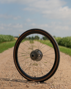 A HED Wheels Emporia GC3 Pro rear wheel set up with tire, cassette, and rotor in a rural setting