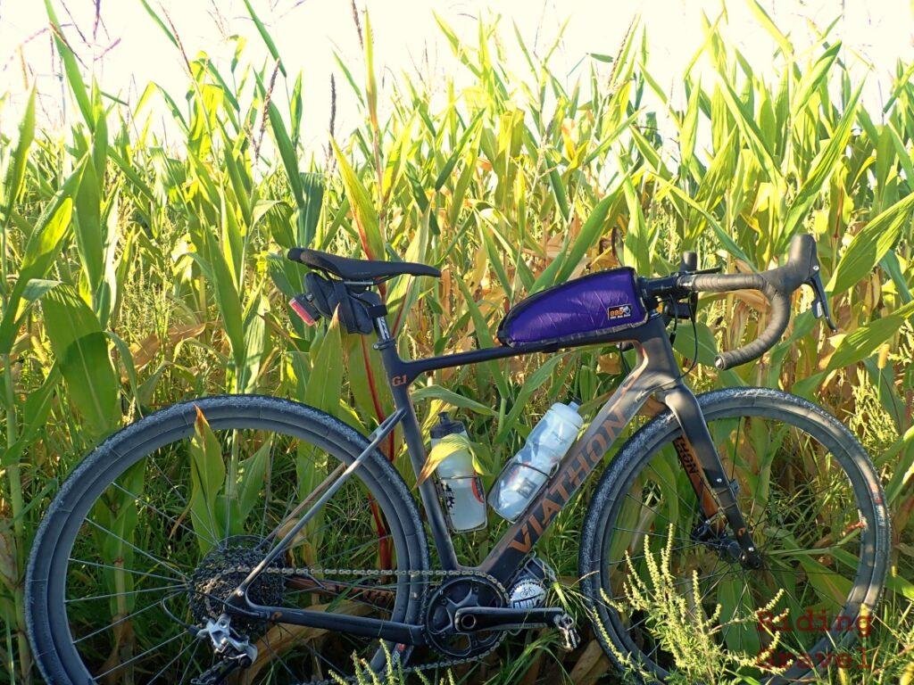 Viathon G1 Rival bike in a corn field